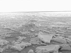 По такому льду москвичи отправились в путь...