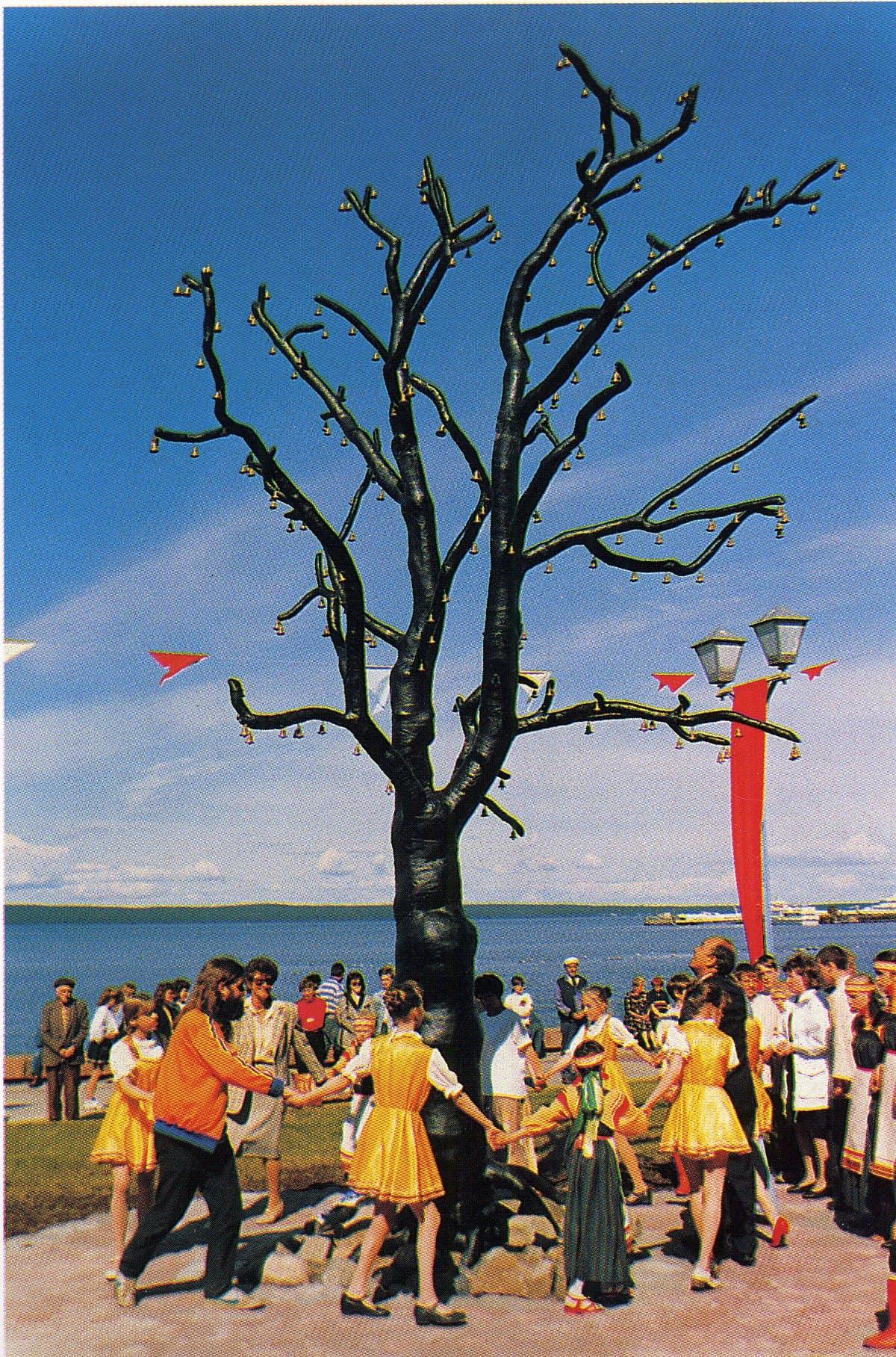 Древо желаний на набережной Петрозаводска