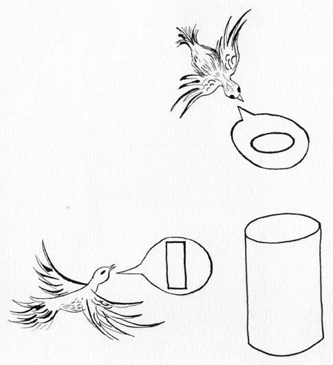 Задача о двух птичках