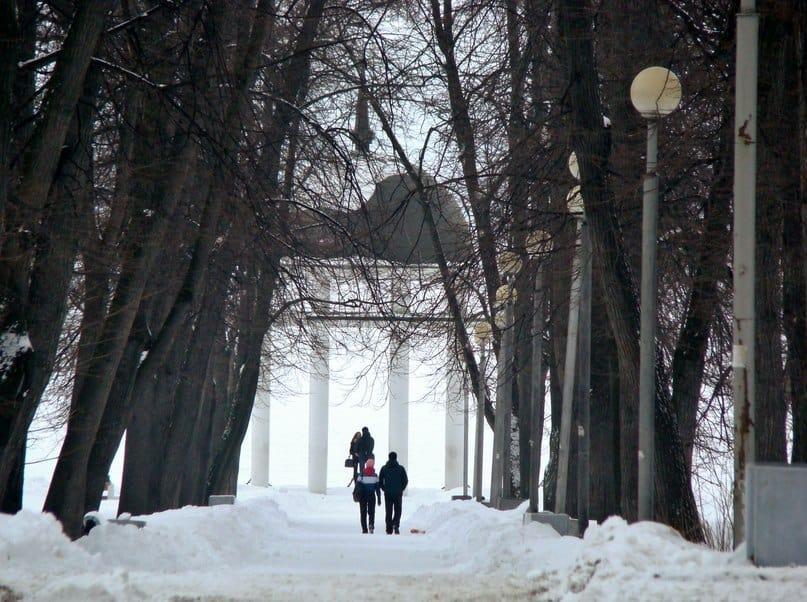 Статус Левашовского бульвара не стал камнем преткновения