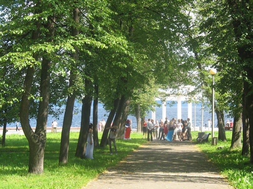 Гаврюшев продолжает оспаривать статус Левашовского бульвара