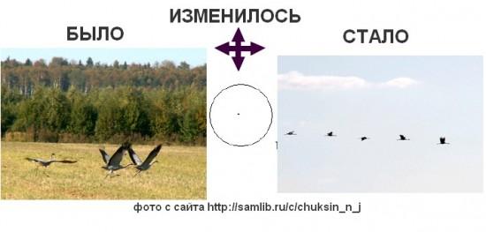 edvestnik_jur