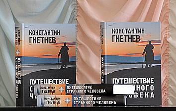 книга_Гнетнев