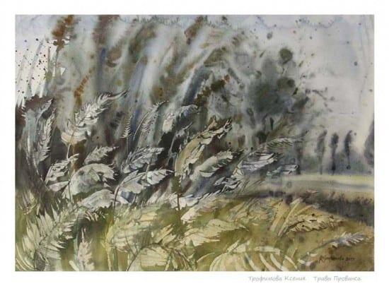 Травы Прованса. 2012