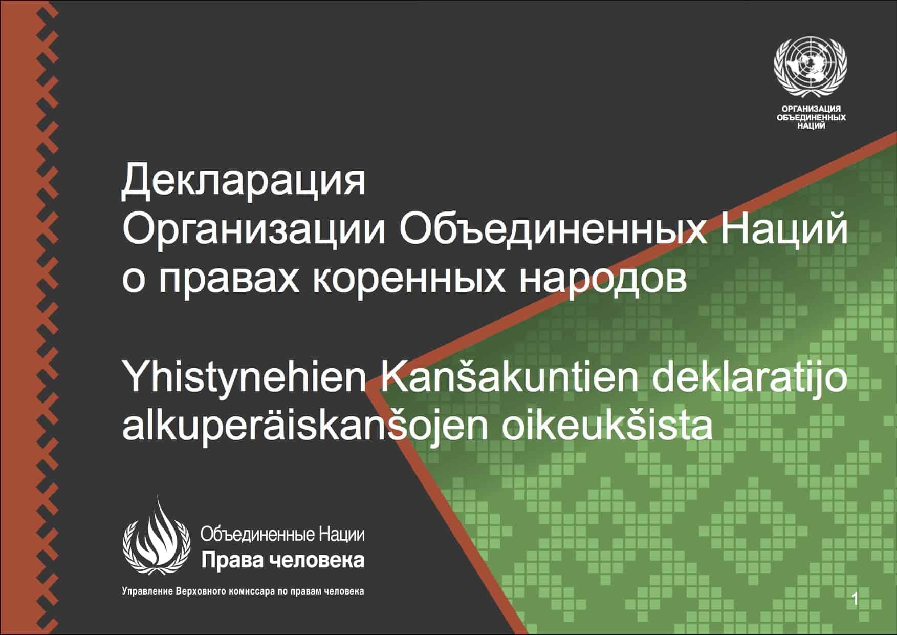 Декларация ООН о правах коренных народов переведена на карельский и вепсский языки