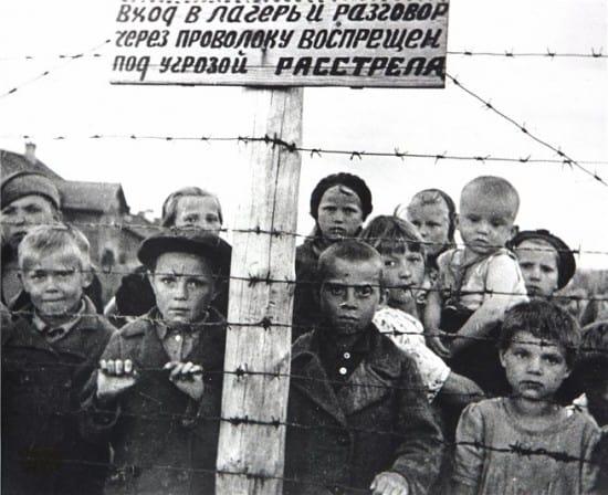 Одна из известных фотографий фотокорреспондента Г. Санько – юные узники концлагеря в Петрозаводске