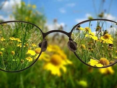 Фокус зрения