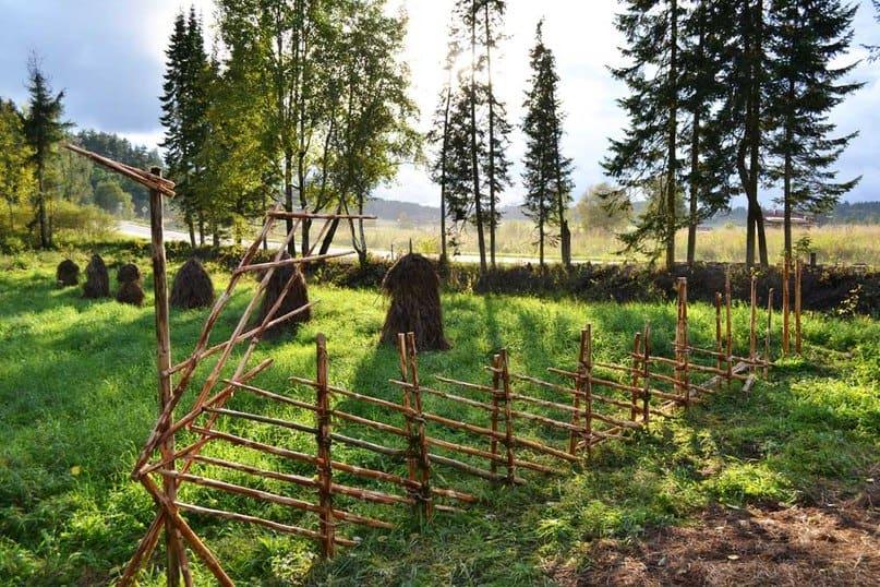 В Карелии возродят журавлиную изгородь