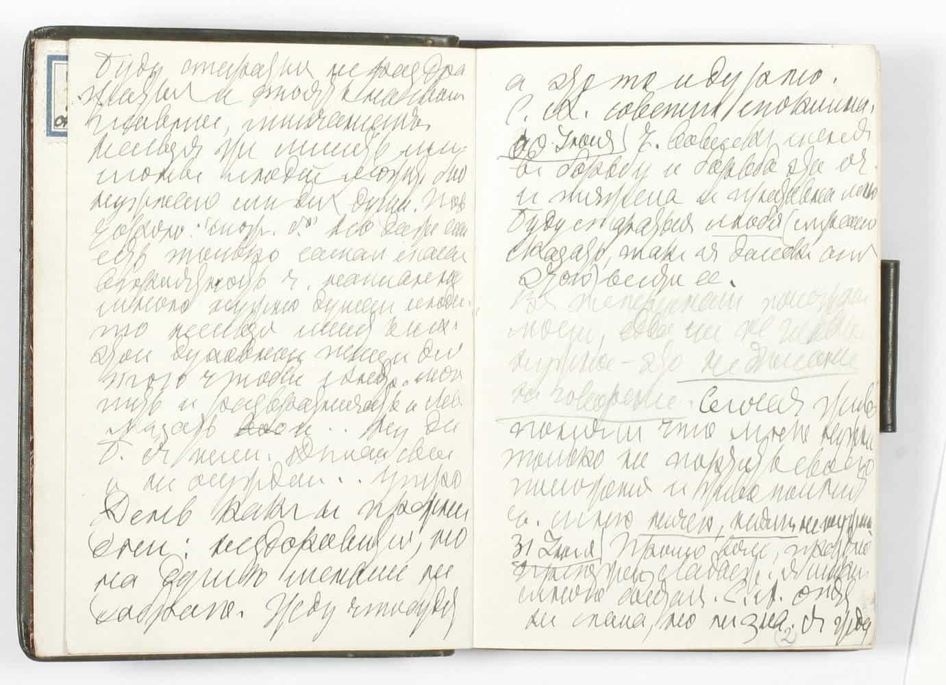Дневники Льва Толстого опубликованы в интернете