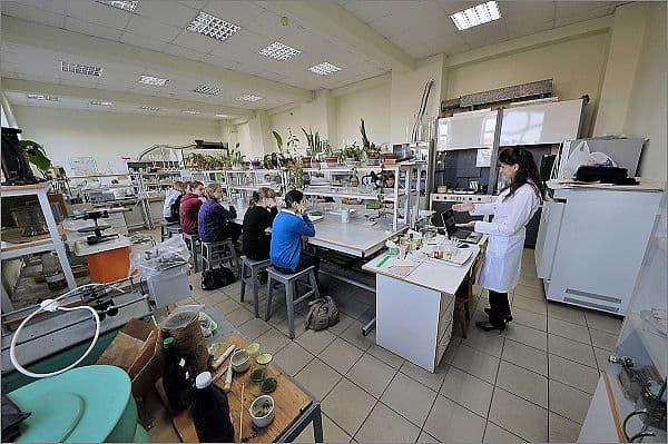 На каникулах в Петрозаводске работала  Школьная академия