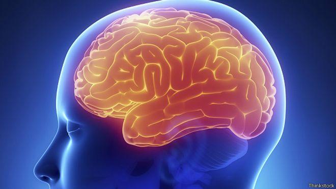 Сколько мозга нам необходимо для нормального функционирования?
