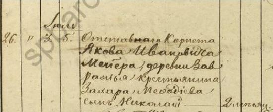 Из метрических книг Гдовского уезда