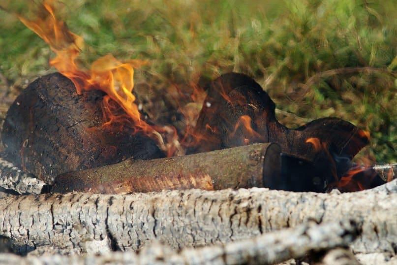 31 августа в Петрозаводске в 15-й раз зажжётся Цветаевский костёр