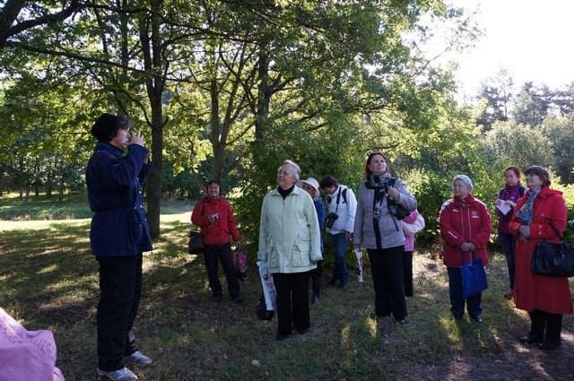 О деревьях много нового услышали от экскурсовода Елены Обуховой