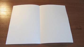 Выпускники напишут итоговое сочинение 3 декабря
