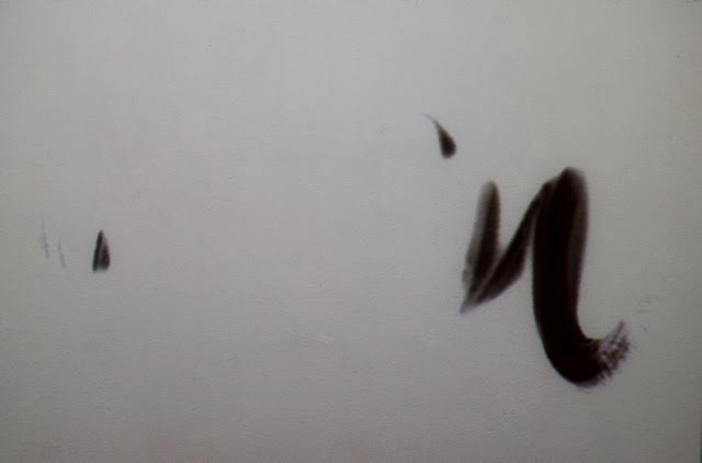 """Стоп-кадр видеоинсталляции Ивана Смирнова """"Берег моря"""""""