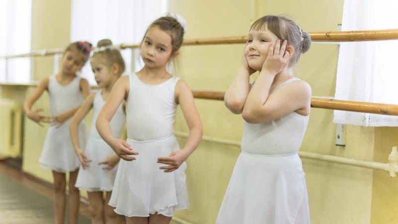 Дмитрия Медведева просят сохранить в Карелии Специализированную школу искусств