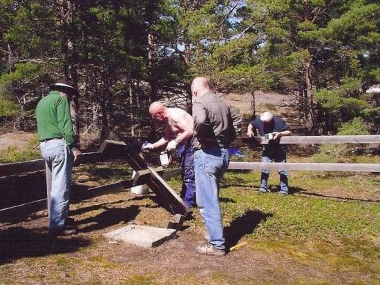 Члены Местного исторического общества Готска Санден за работой по восстановлению кладбища