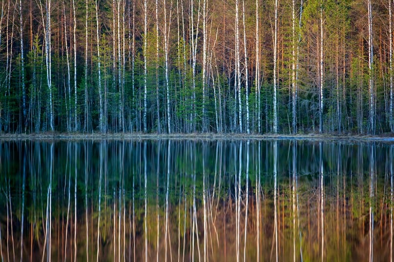 Фото Игоря Подгорного