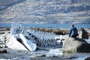 Левиафан. Фото www.pravmir.ru