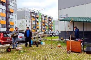 В Петрозаводске жители микрорайона Город Солнца высадили около 100 деревьев (фоторепортаж)