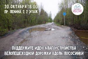 Когда в Петрозаводске появятся велодорожки?