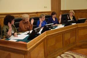 Профильный комитет карельского парламента — не место для дискуссий