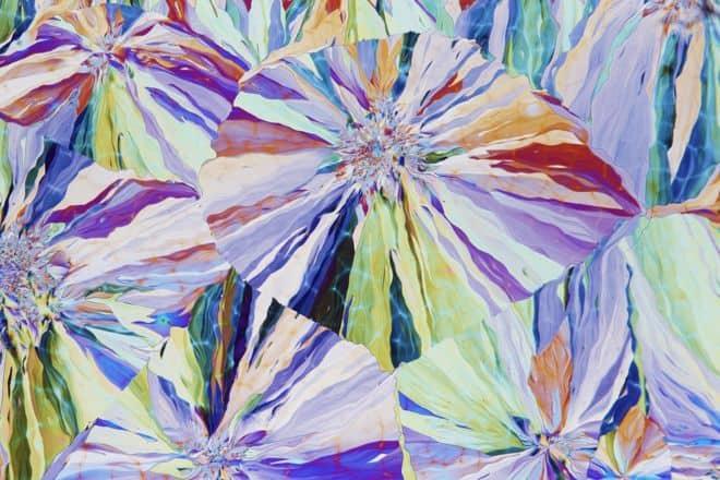 Ивовый кристалл