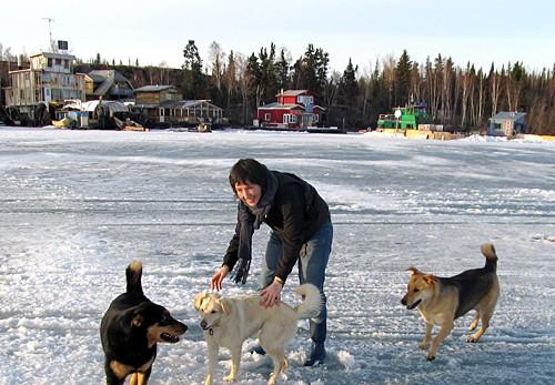 Алисон Маккриш (Alison McCreesh) – январский гость Карельской арт-резиденции. Фото alisonmccreesh.com