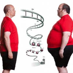В гармонии с Геном – в гармонии с Телом