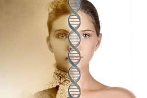 Генеалогический ДНК-тест