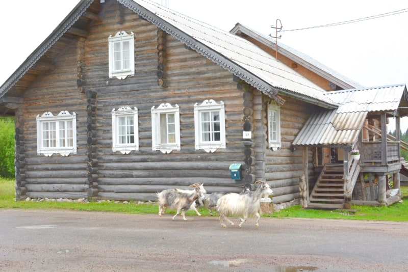 Православные каникулы в Музее изобразительных искусств Карелии