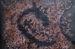 Новый петроглиф. Фото Надежды Лобановой