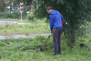 В Беломорске местные жители и сами благоустраивают свой город. Фото из группы vk.com/belomorskaya_tribuna