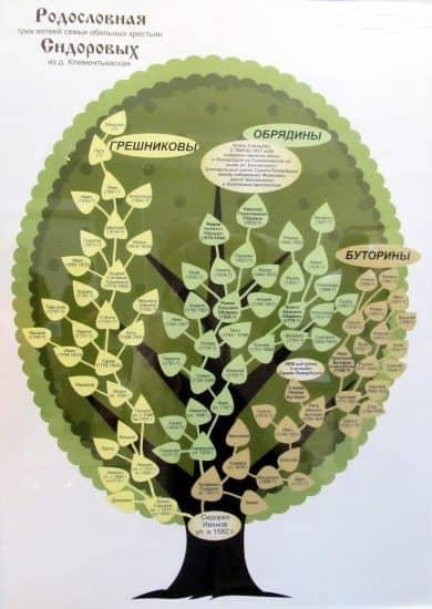 Родовое древо крестьян Сидоровых