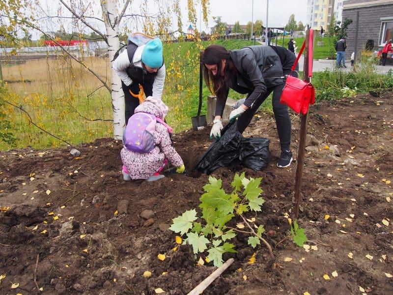 """Акция «Посади фамильное дерево"""". Фото Ирины Ларионовой"""