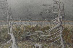 Серый цвет Олега Юнтунена. Из небытия в бытие