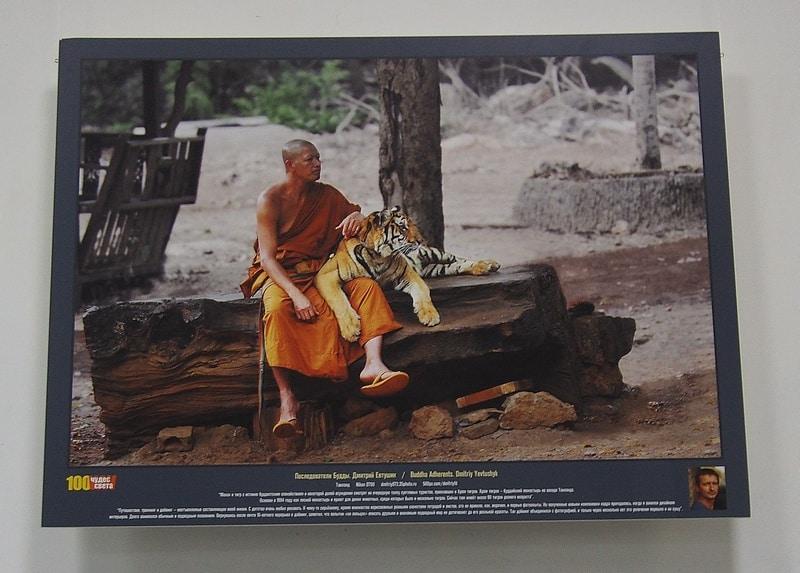 Выставка «100 чудес света» в ГВЗ Петрозаводска