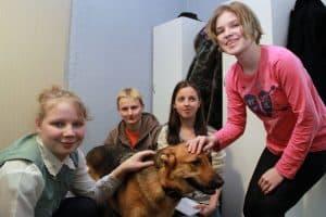 В Карелии для детей открыт центр канистерапии