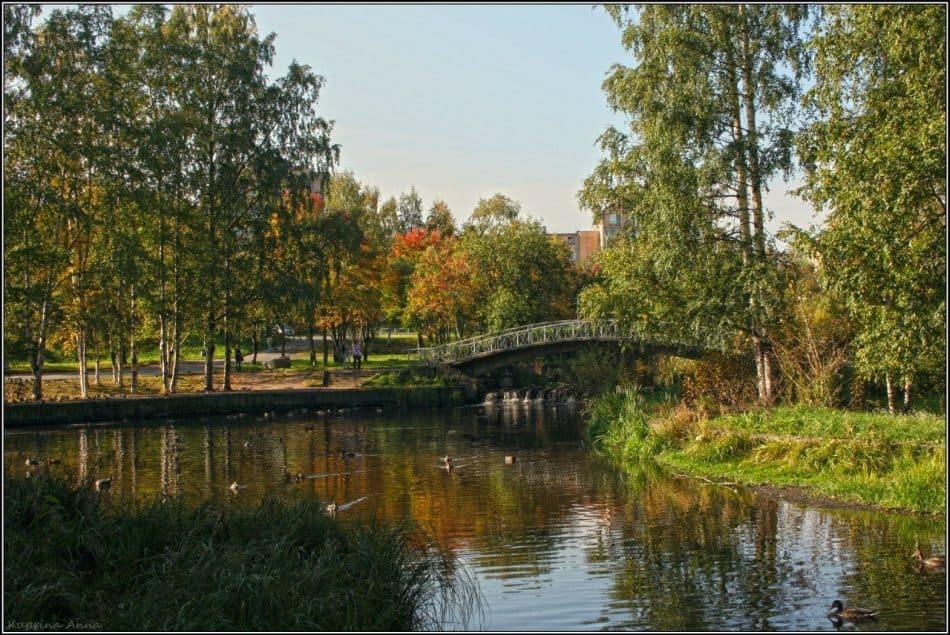 Парк на Неглинке, 2015 год. Фото: Анна Куприна