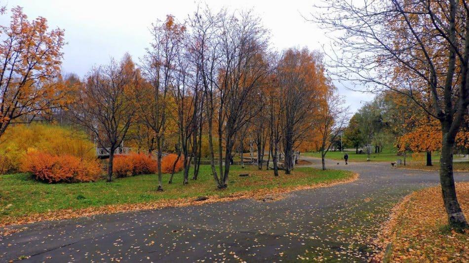 Парк на Неглинке, 2015 год. Фото: Наталья Прохорова