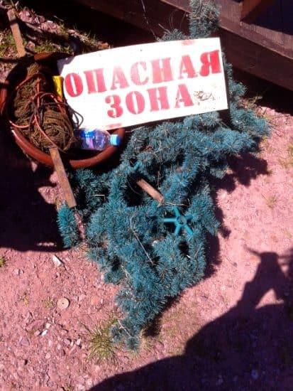 Чистые игры в Петрозаводске. Фото Юлии Юркиной