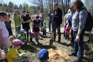Детям и родителям рассказывают, как правильно посадить дерево. Фото Марии Голубевой