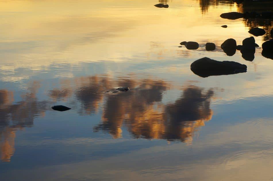 Летом в Карелии. Фото Ирины Ларионовой