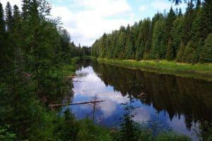 Московские учёные идут историческими маршрутами новгородцев по территориям Водлозера
