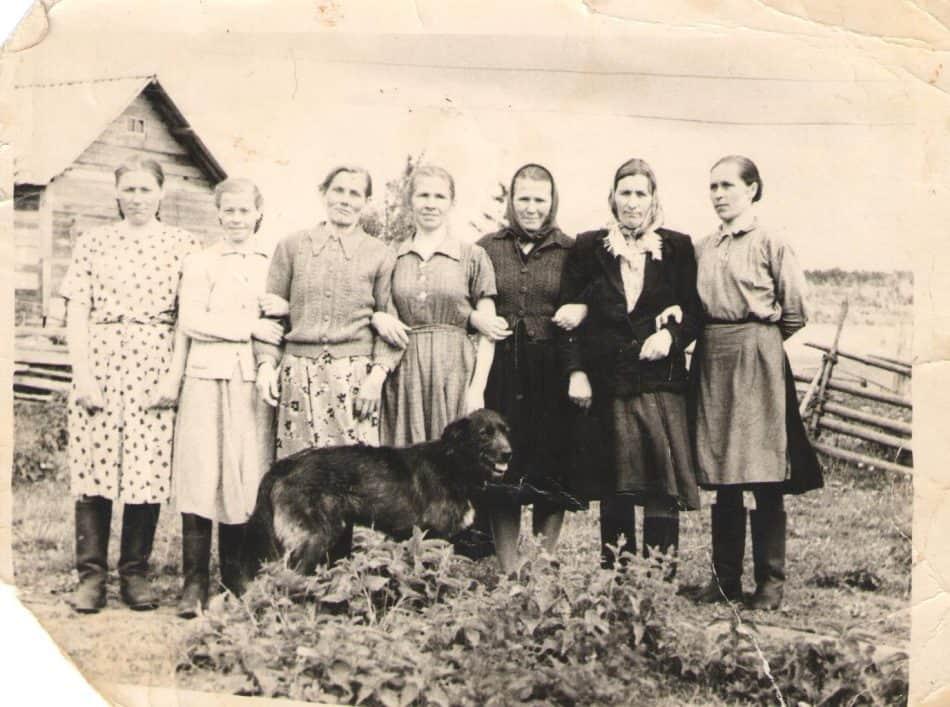 Деревенские женщины. Их уже нет, но память жива. 50-е годы