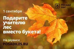 Фото с сайта: pp.userapi.com