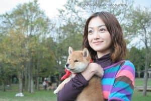 В Петрозаводске покажут японские фильмы