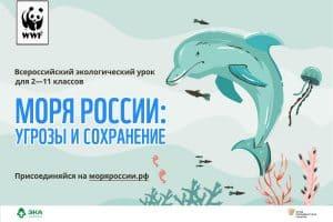 Учителей Карелии приглашают провести экоурок «Моря России»