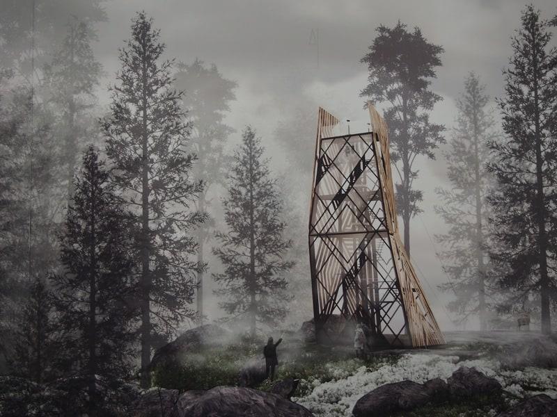 Дизайн северных ландшафтов. в НБ РК. Фото Ирины Ларионовой